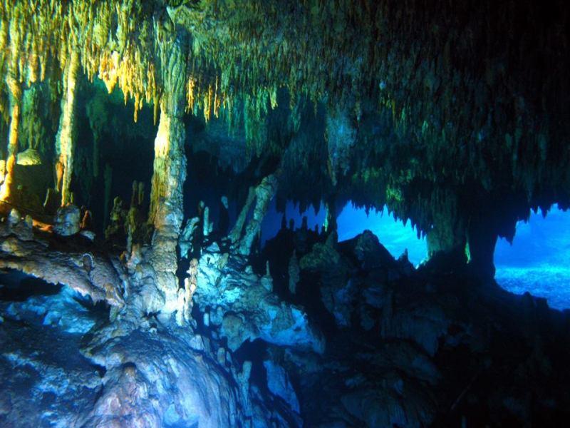 Cenote Dreamsgate Playa del Carmen Mexico