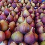 figs Carmel Market Tel Aviv Israel