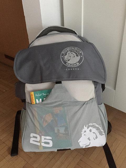 Numinous Daypack
