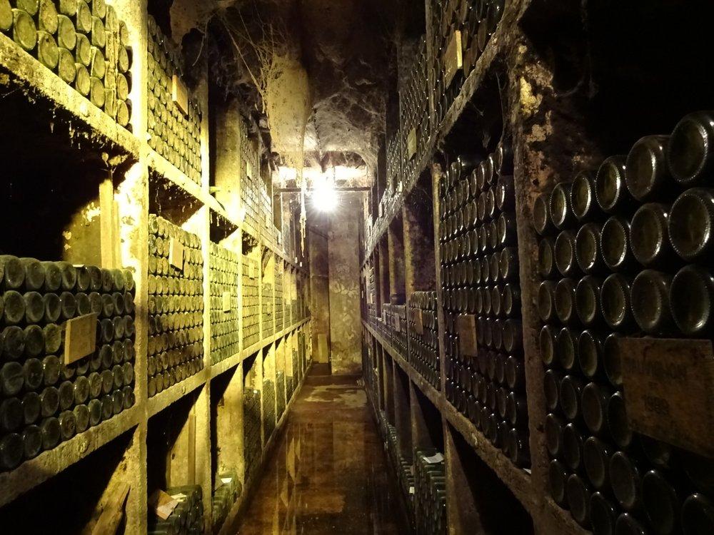 Ptuj Slovenia Wine