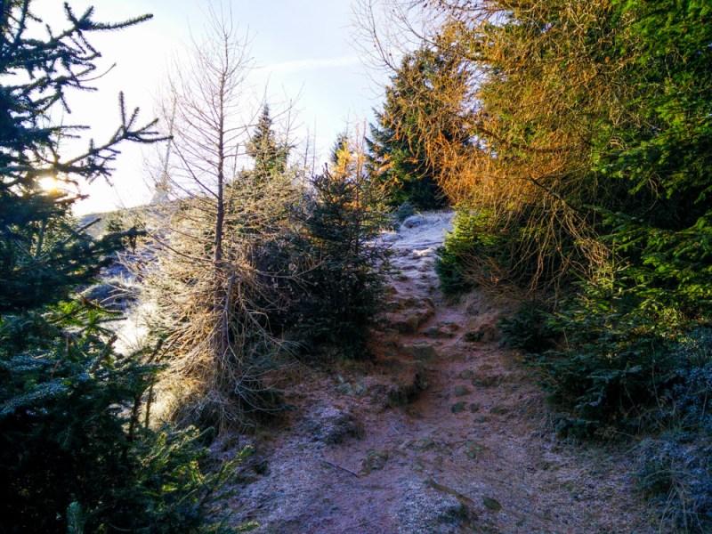 Mugel Wanderung Winter