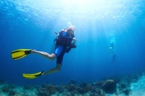 Inspiring Female Dive Bloggers to follow when you crave the Ocean