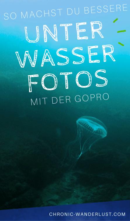 Bessere unterwasserfotos mit gopro pinterest