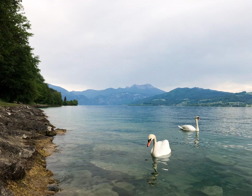 Attersee Salzkammergut_Chronic Wanderlust