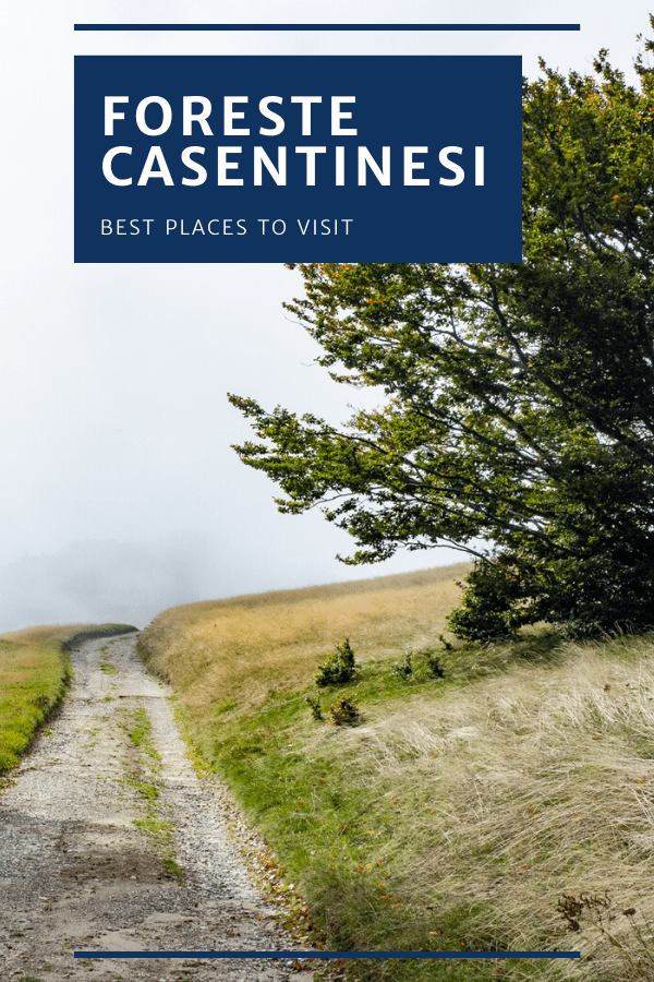 Foreste Casentinesi Best places to visit