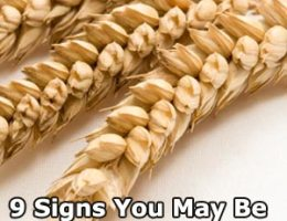 9 Signs You May Be Gluten Intolerant