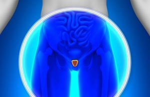 How to Manage Chronic Bacterial Prostatitis