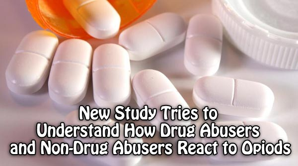 New Study Tries to Understand How Drug Abusers and Non-Drug Abusers React to Opiods