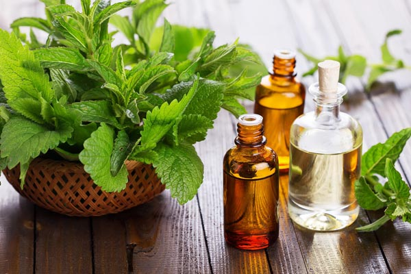 Peppermint oil for headaches