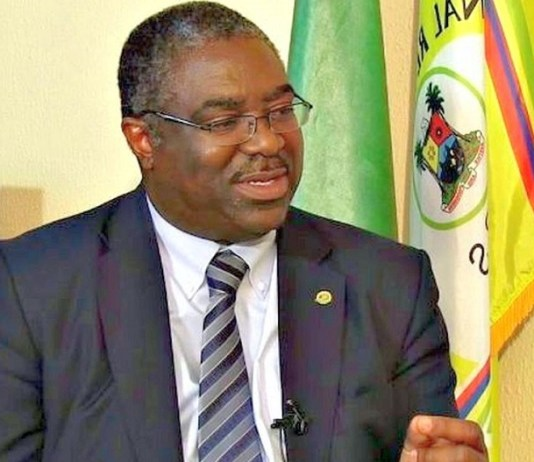 Former FIRS chairman, Babatunde Fowler went after tax evaders