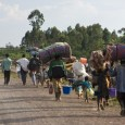 Over 20,000 Nigerians have fled into Niger Republic following violence in Zamfara and Kaduna
