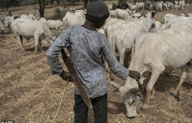 Nigerians have reacted differently to the setting up of a Fulani Radio