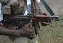 Police confirm 14 dead in Katsina vigilante-Bandit clash
