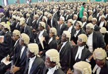 29 students graduated with First Class from Nigerian Law in 2017 Law students