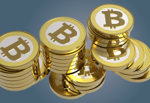 Millions of dollars lost on crypto and forex scams in 2018/19