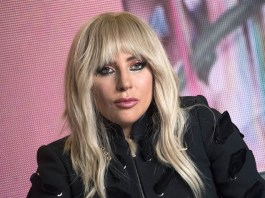 Lady Gaga has offered $500,000 in exchange for her French Bulldogs, Koji and Gustav