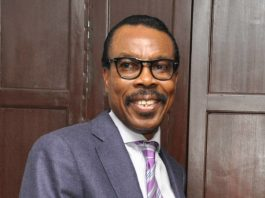 Bismarck Rewane says VP Osinbajo's comments on Nigeria's foreign exchange were right