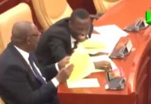 Ghana MPs could not help but laugh as Frimpong Osei named the villages in his constituency