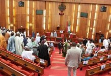 APC and PDP senators disagreed over politicization of the Social Investment Programme