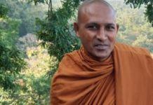 Rahul Walke was meditating under a tree in Tadoba forest