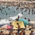 January was so hot Australians had to cool off at the beach in high numbers