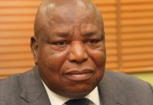 Nelson Brambaifa, NDDC acting Managing Director