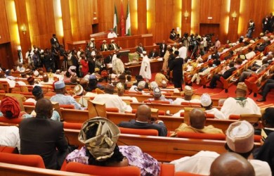 The Nigeria Senate