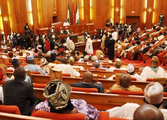 Loan defaulters The Nigeria Senate arms ayetoro NERC