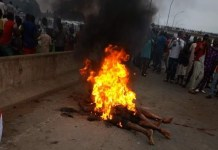 Mob burns one chance operators in Abuja