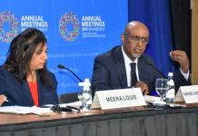 Mr Abebe Selassie, the Director of the African Department at the IMF