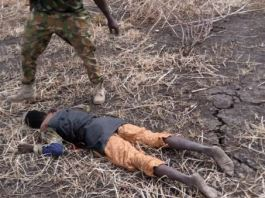 Nigerian troops neutralised Boko Haram and ISWAP fighters in Borno State