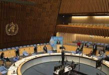 WHO member states of the World Health Assembly met online