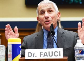 US infectious disease chief Dr Anthony Fauci