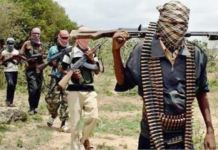 Bandits went on a killing spree in Northern Nigeria