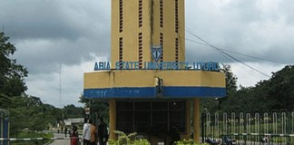 Gunmen kidnap Abia state University students ABSU