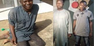 A high profile Boko Haram terrorist and Urea Fertilizer suppliers arrested by the Nigerian Army in Borno