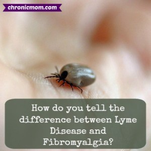 how-do-you-tell-the-difference-between-lyme-and-fibro