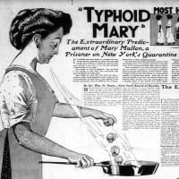 La cuisinière x Mary Beth Keane