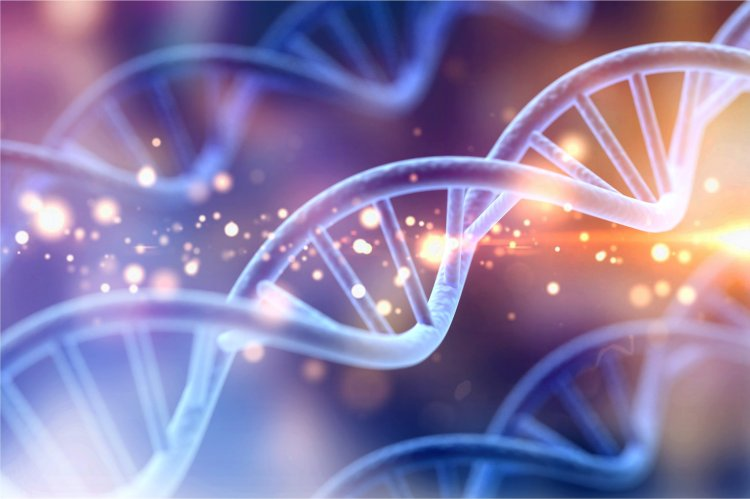 cambridge a level biology homeschooling online school 66