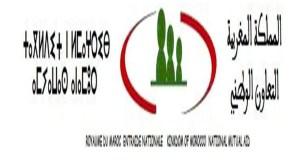غدا الخميس : انطلاق احتفالات الذكرى 61 لتأسيس التعاون الوطني بمدينة بيوكرى