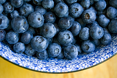 berry_blue1S.jpg