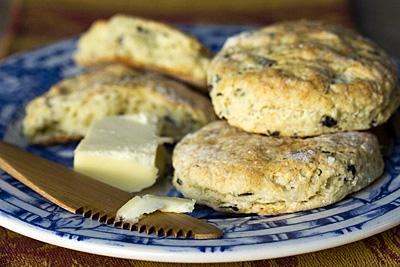 biscuit-basil_1S.jpg