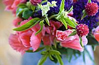 blue_rose_2S.jpg