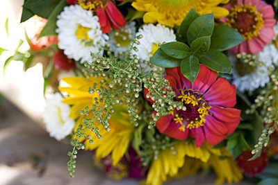 flores-outubro_1S.jpg