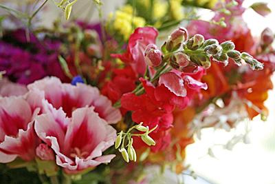 flores_jarro_2S.jpg
