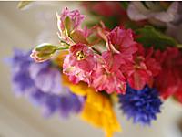 flores_jarro_3S.jpg