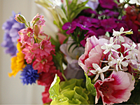 flores_jarro_5S.jpg