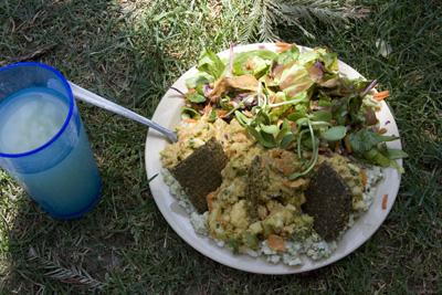 Whole Earth Festival 2010