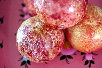 pink_plum_s.jpg
