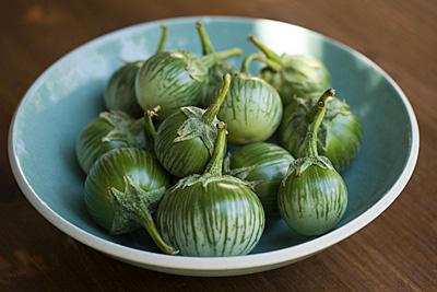 thai-eggplant_1S.jpg